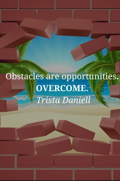 an-obstacle-is-often-an-oppportunity