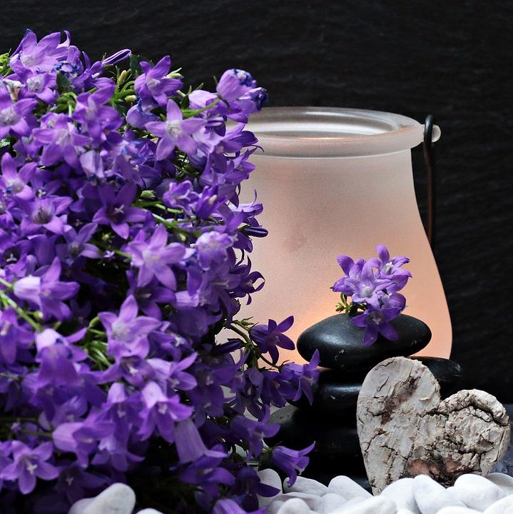 flowers-2065789_960_720
